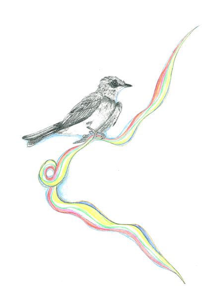 july-29-bird2