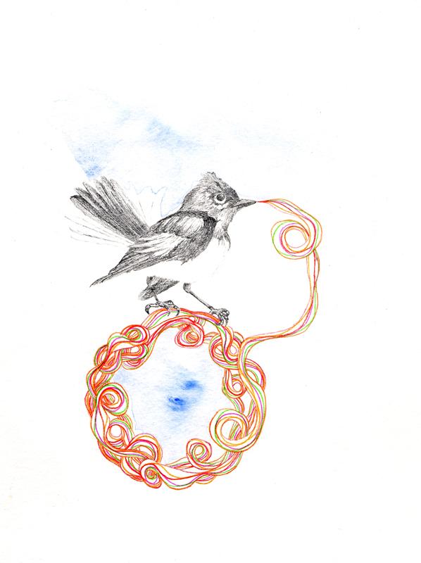 oct-16bird-2